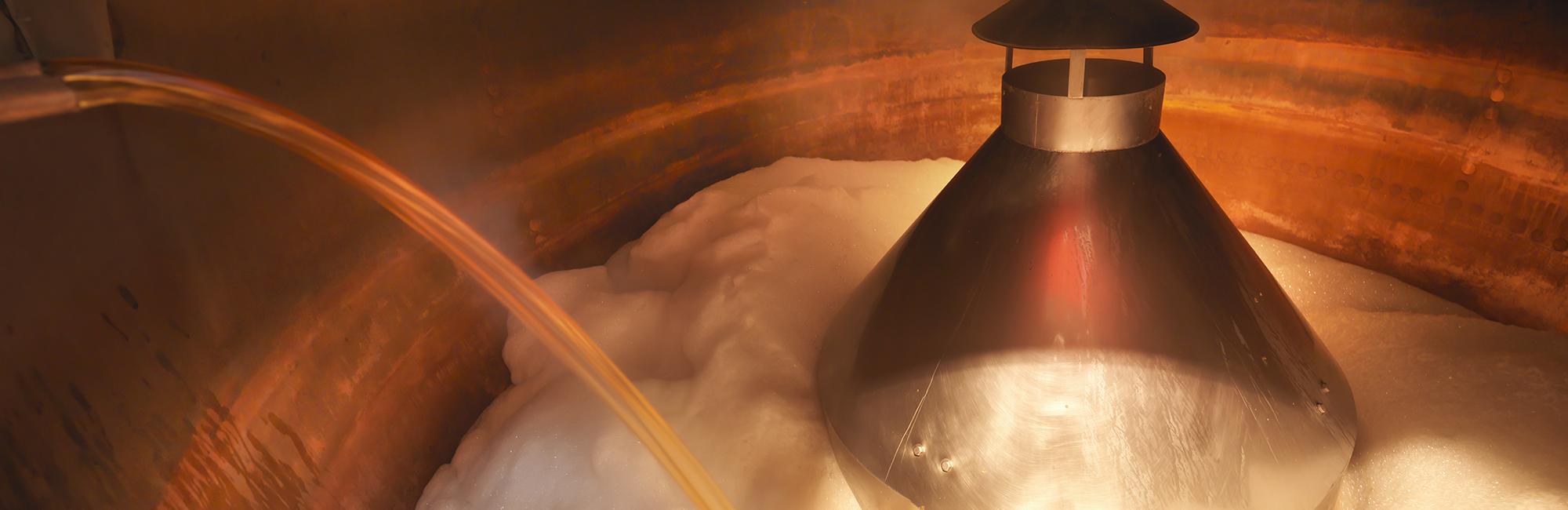 4 - La fermentation